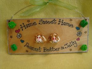 3d Two character Guinea Pig Sign Hutch Run Room Home House Cage Garden Personalised Plaque Sign Cavy